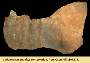 Image of saddle fragment after conservation displayed at the Visitor Center at JPPM.