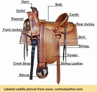 Image of saddle with labels describing different parts of the saddle, from www.cochiseleather.com.