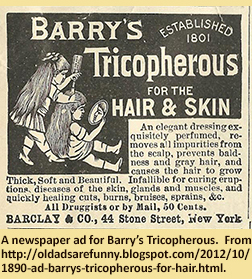 A newspaper ad for Barry's Tricopherous.  From http://oldadsarefunny.blogspot.com/2012/10/1890-ad-barrys-tricopherous-for-hair.html.