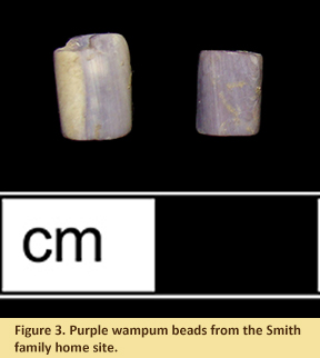 Figure 3. Purple wampum beads from the Smith family home site.